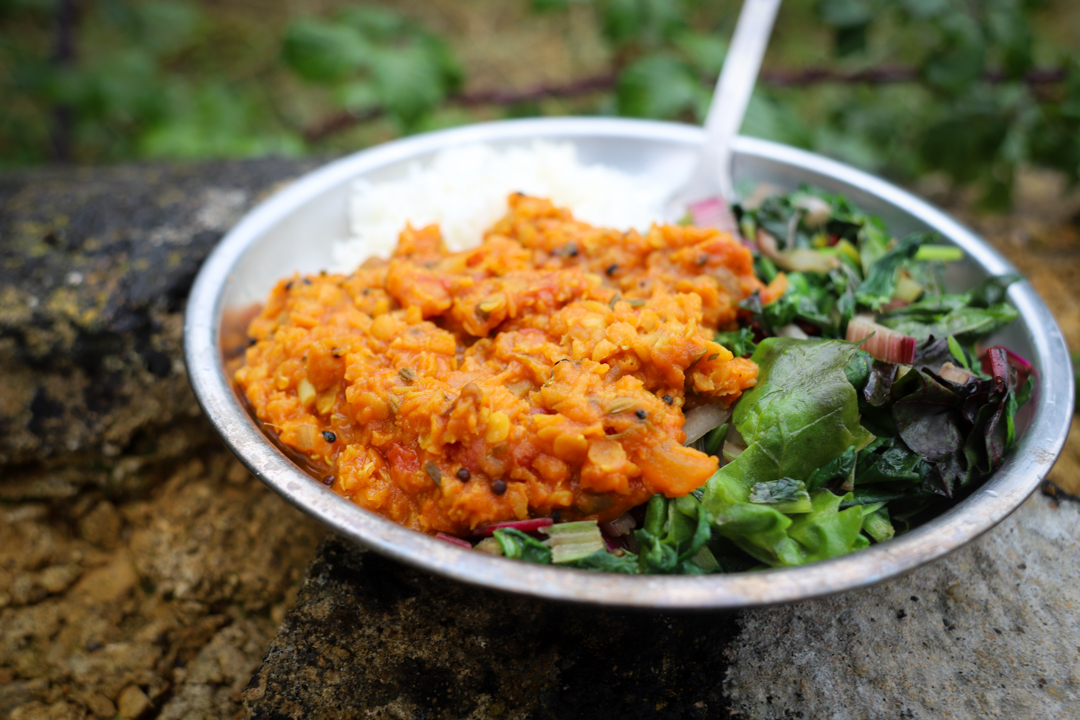 Red Lentil Dal - Dehydrated Backpacking Recipe