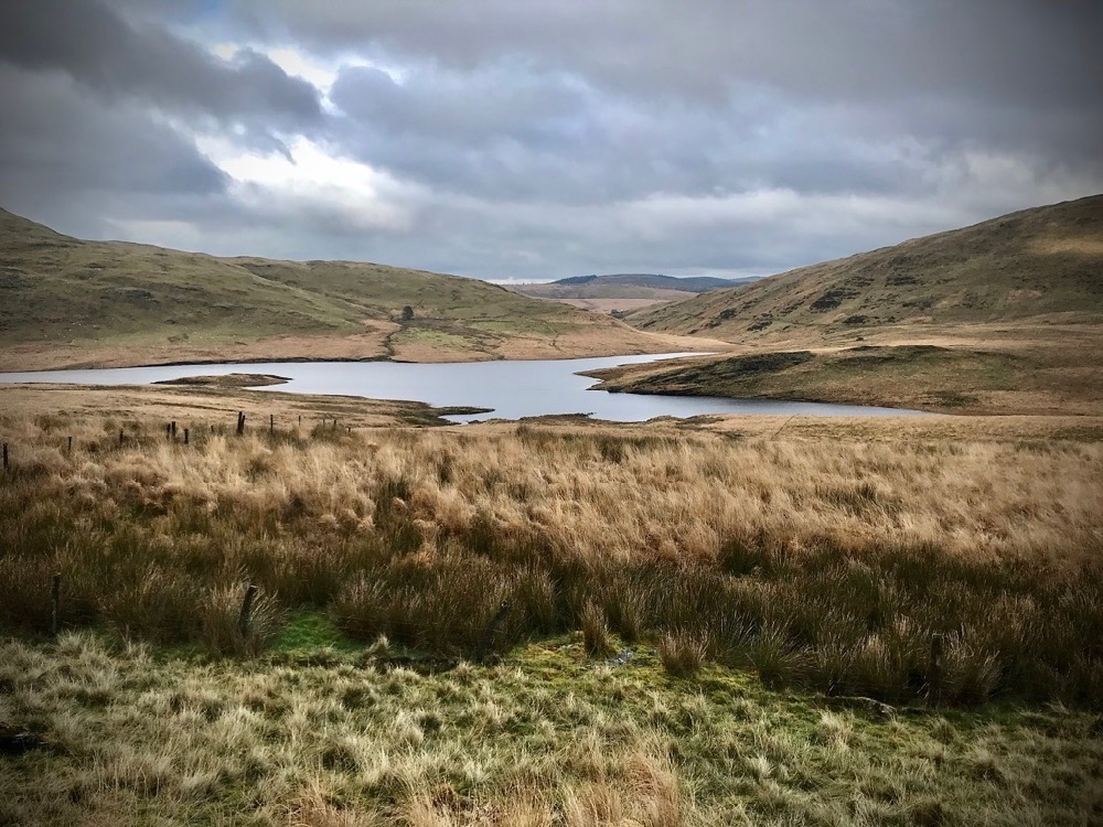 Cambrian Mountains, The Green Desert of Wales