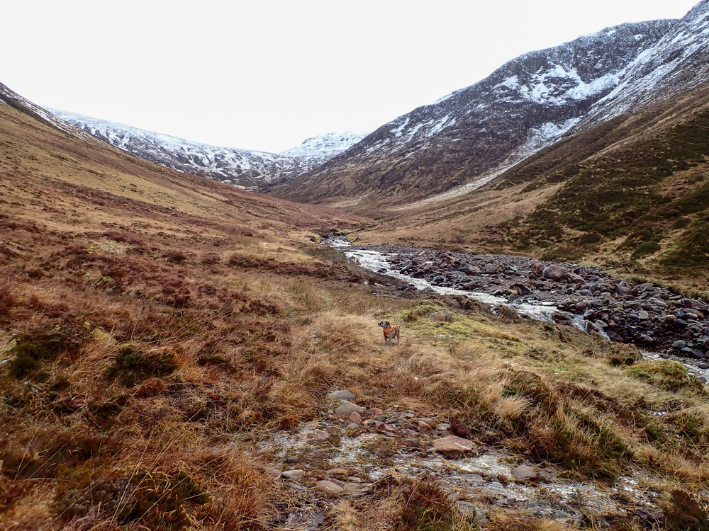 A track takes you up Coire Mhoraigein. The target hill slowly comes into view.