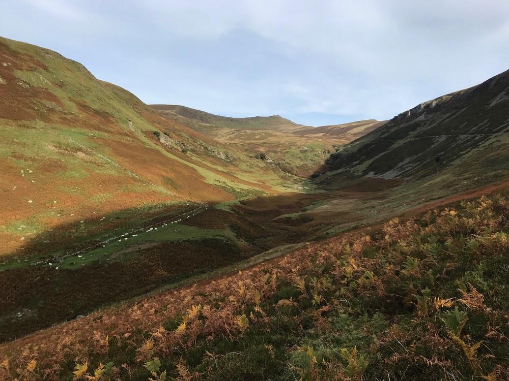 Berwyn Mountains