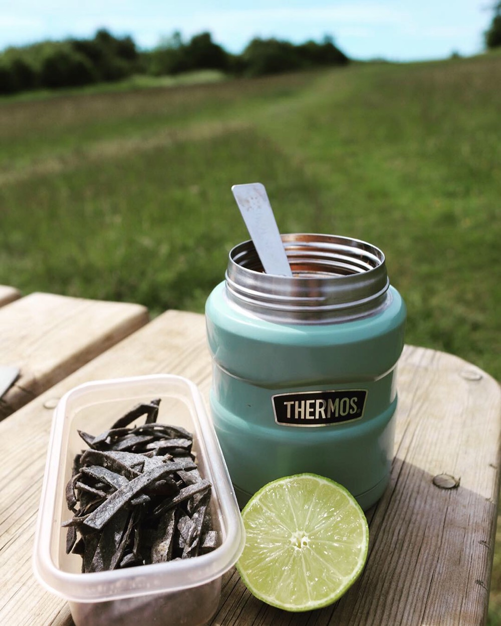 Tortilla Soup in the Thermos Stainless Food Flask